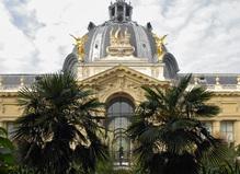 Petit Palais,Musée des Beaux-Arts de la Ville de Paris