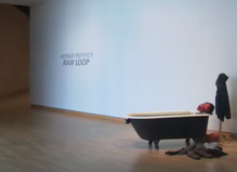 Werner Reiterer — Raw Loop